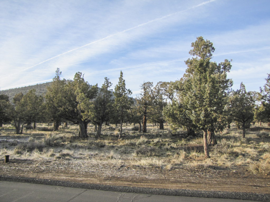 Level and ready-to-build .26ac lot at Ridge at Eagle Crest