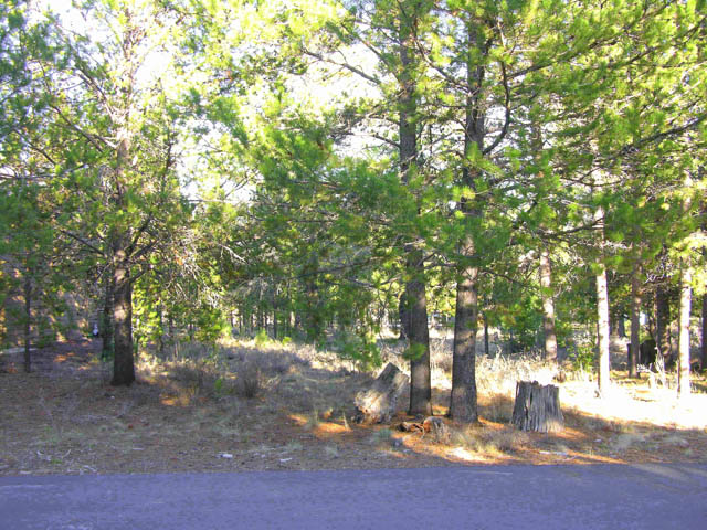 Gorgeous Building Site in a Great Sunriver Location!