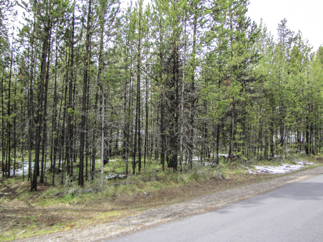 ½ acre level lot with the beauty of Central Oregon all around!